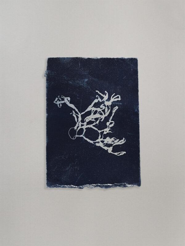 Anne Nowak - Blue Seaweed 02