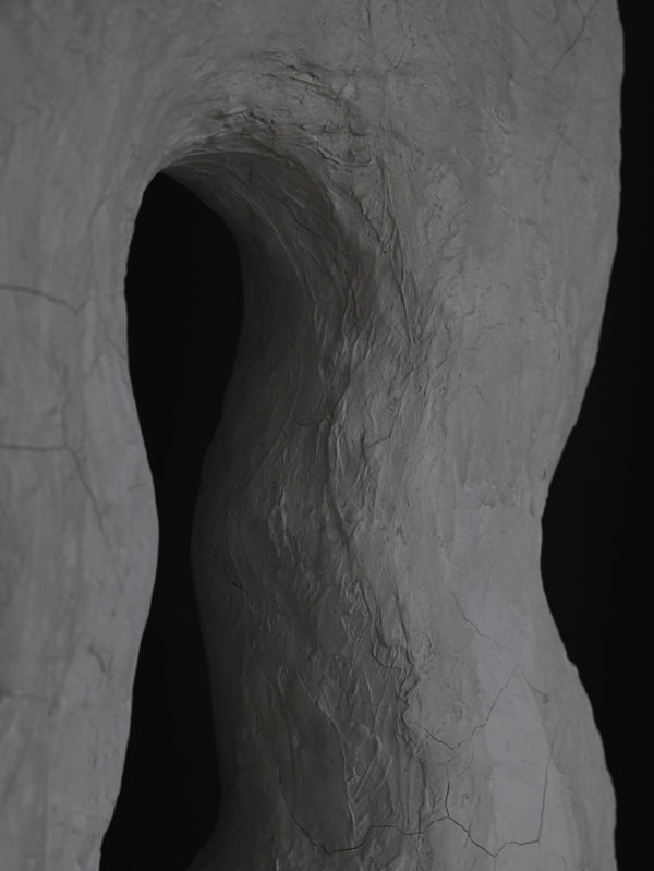 Noa Gammelgaard - Bryozo Chalk Danica OOO